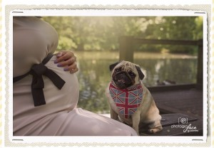 maternity photographer battersea: expecting baby boy. Dog brother.